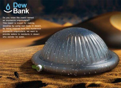 Dew Bank水壶